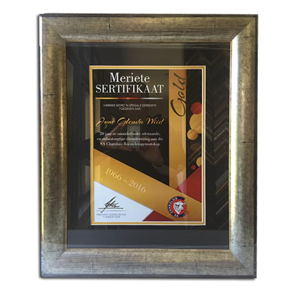 Certificate Framing with Black Mounting